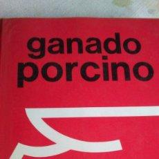 Libros antiguos: GANADO PORCINO. Lote 180161480