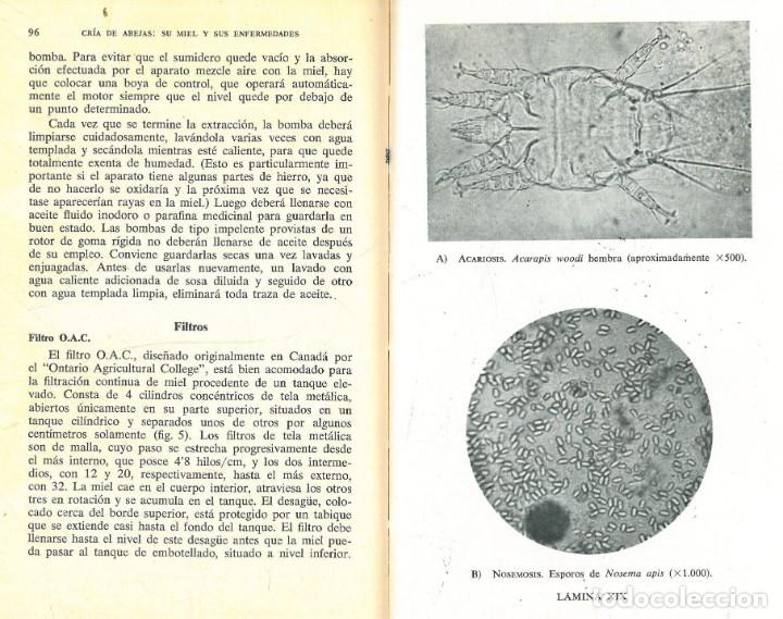 Libros antiguos: CRÍA DE LAS ABEJAS SU MIEL Y SUS ENFERMEDADES (A.G. HARRISON - A. HEBDEN - F.A. RICHARD) - Foto 5 - 195337693