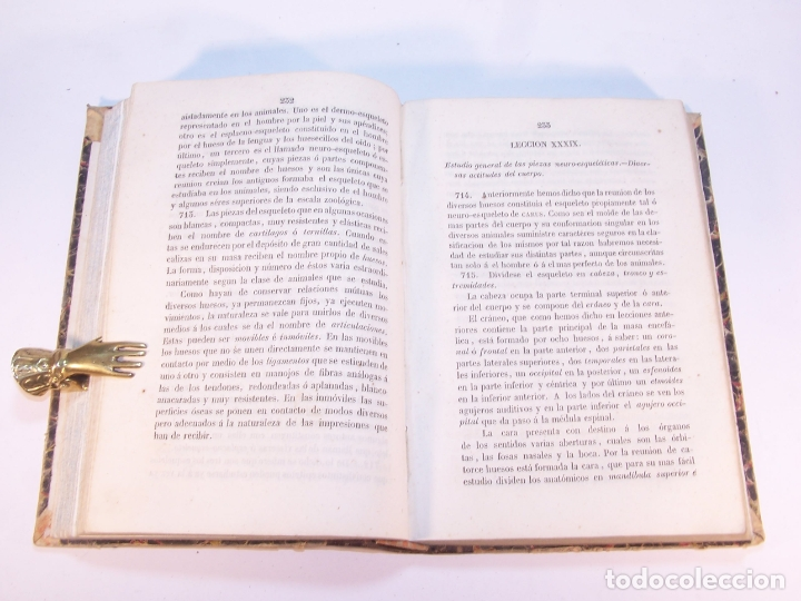 Libros antiguos: Manual de historia natural. D. Manuel María José de Galdo. Madrid. Imprenta de D.B.Gonzalez. 1849. - Foto 5 - 182291733