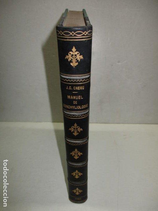 Libros antiguos: MANUEL DE CONCHYLIOLOGIE ET DE PALÉONTOLOGIE CONCHYLIOLOGIQUE. TOMO SEGUNDO. CHENU, Dr. J. C. - Foto 2 - 183701977