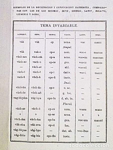 Libros antiguos: SANSCRITO Y LINGÜÍSTICA COMPARADA - Foto 2 - 184567962