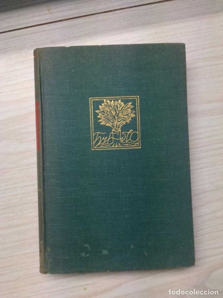 Libros antiguos: Los principios de las ciencias - W. Stanley Jevons - Foto 2 - 186192243