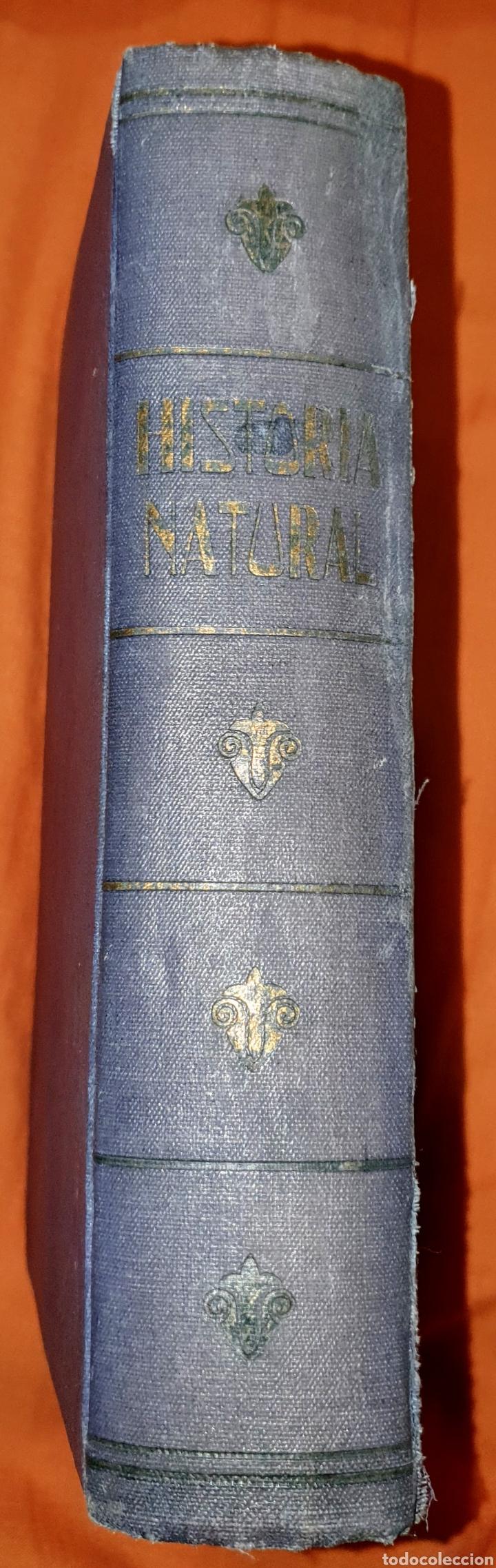 Libros antiguos: Antiguo libro Historia Natural, en la primera hoja está la firma del anterior propietario. - Foto 3 - 191617186