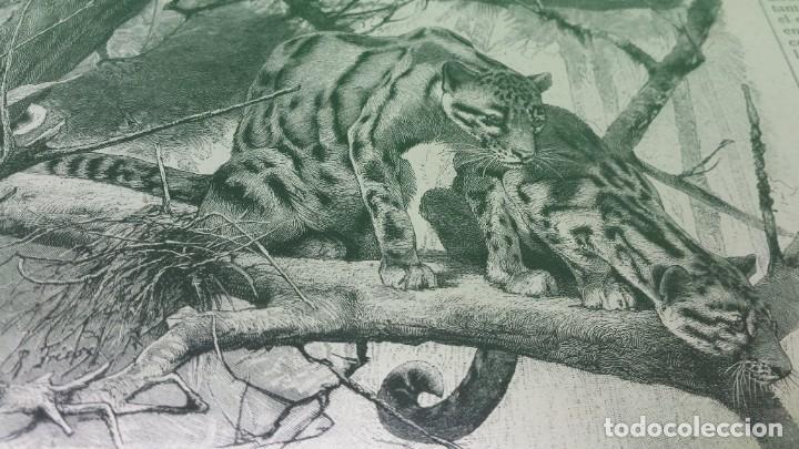 Libros antiguos: 1.887 La Ilustración Artística. - Foto 35 - 191920878