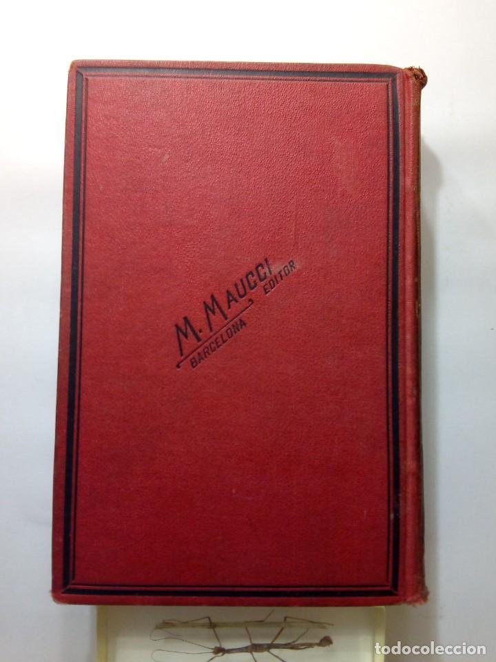 Libros antiguos: LUIGI MOTTA - LOS FLAGELADORES DEL OCÉANO - ILUSTRADO - AVENTURAS - Foto 2 - 192369832