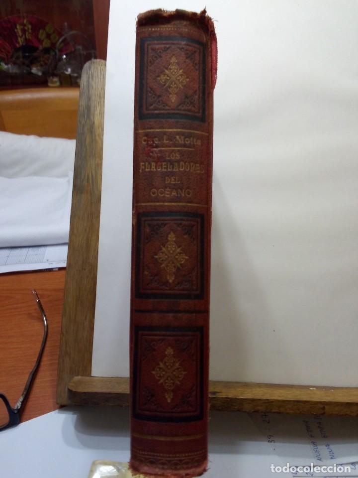 Libros antiguos: LUIGI MOTTA - LOS FLAGELADORES DEL OCÉANO - ILUSTRADO - AVENTURAS - Foto 3 - 192369832
