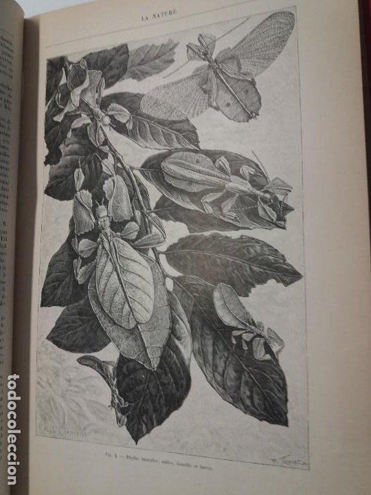Libros antiguos: LIBRO LA NATURE, REVISTA DE CIENCIAS, 1904, PRECIOSA ENCUADERNACION - Foto 17 - 193210763