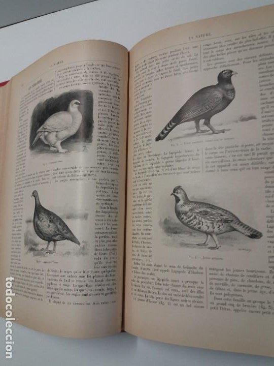 Libros antiguos: LIBRO LA NATURE, REVISTA DE CIENCIAS, 1904, PRECIOSA ENCUADERNACION - Foto 24 - 193210763