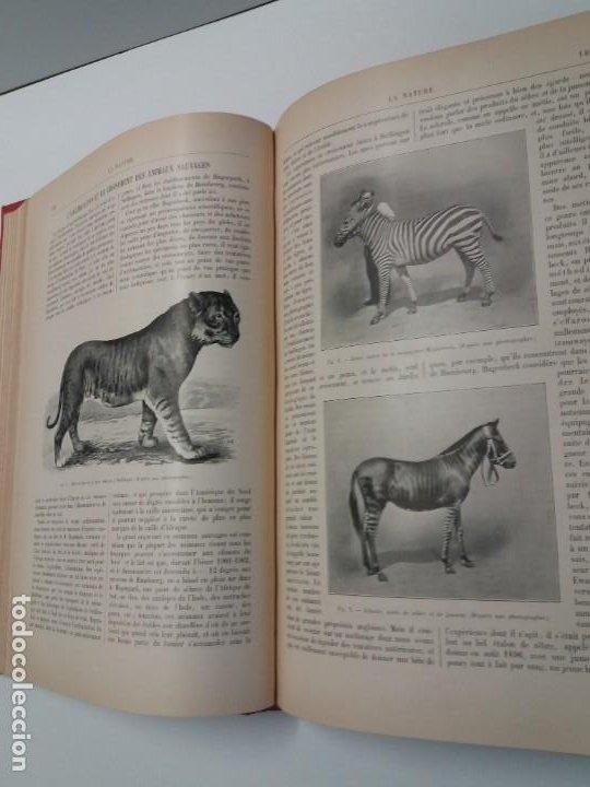 Libros antiguos: LIBRO LA NATURE, REVISTA DE CIENCIAS, 1904, PRECIOSA ENCUADERNACION - Foto 25 - 193210763