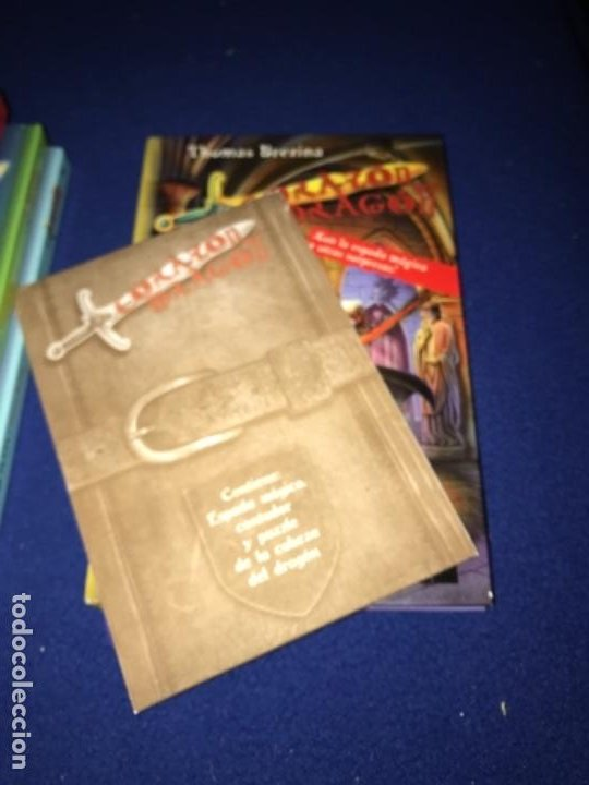 Libros antiguos: LOTE Corazón de dragón nºS 1 2 3 8 FLECHA DE PLATA CABALLERO PIEDRA MAGO CIEGO ETC Thomas Brezina SM - Foto 15 - 194113142