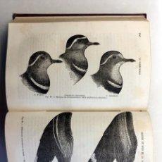 Livres anciens: WALLACE : LE DARWINISME 1ª ED 1891 (SELECTION NATURELLE, APPLICATIONS...) DARWINISMO. EVOLUCIONISMO.. Lote 194192057