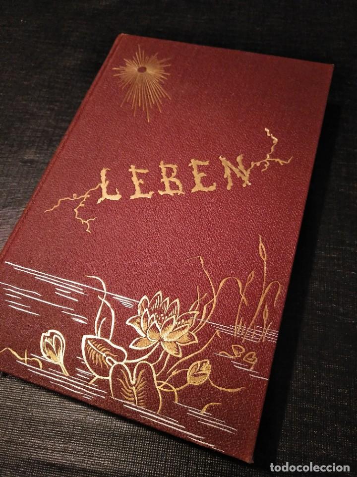 LIBRO RARO (1888): LEBEN; ORGANISCHE PHILOSOPHIE UND POESIE, GEISTES-EHE - JOSUA KLEIN (1867-1945) (Libros Antiguos, Raros y Curiosos - Pensamiento - Otros)