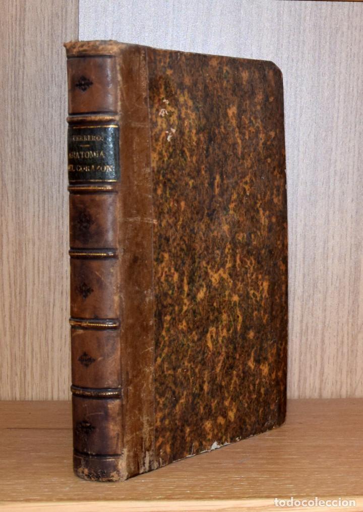 Libros antiguos: ANATOMÍA DEL CORAZÓN. ESTUDIO SOCIAL - Teodoro GUERRERO - Foto 2 - 194321901