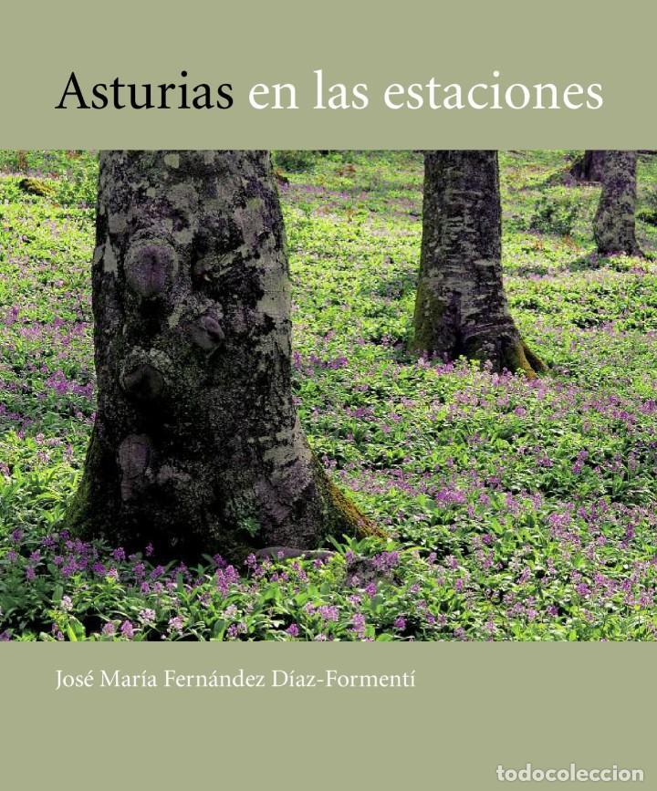 ASTURIAS EN LAS ESTACIONES. FERNÁNDEZ DÍAZ-FORMENTI, FRANCISCO (Libros Antiguos, Raros y Curiosos - Literatura - Otros)