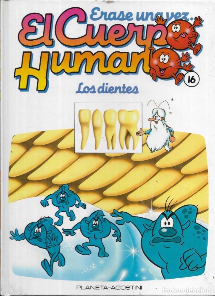 == A33 - LIBRO EDUCATIVO INFANTIL - ERASE UNA VEZ EL CUERPO HUMANO - LOS DIENTES - VOL.16 (Libros Antiguos, Raros y Curiosos - Literatura Infantil y Juvenil - Otros)