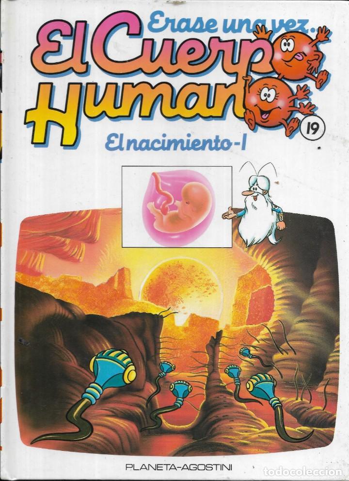 == A35 - LIBRO EDUCATIVO INFANTIL - ERASE UNA VEZ EL CUERPO HUMANO - EL NACIMIENTO 1 - VOL.19 (Libros Antiguos, Raros y Curiosos - Literatura Infantil y Juvenil - Otros)