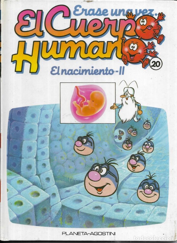 == A36 - LIBRO EDUCATIVO INFANTIL - ERASE UNA VEZ EL CUERPO HUMANO - EL NACIMIENTO 2 - VOL.20 (Libros Antiguos, Raros y Curiosos - Literatura Infantil y Juvenil - Otros)