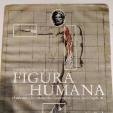 Libros antiguos: HISTORIA DE LAS TEORÍAS DE LA FIGURA HUMANA. DIBUJO. ANATOMÍA. PROPORCIÓN. FISIOGNOMÍA / JUAN BORDES. Lote 194642273