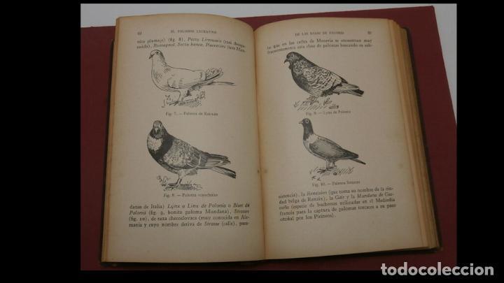 Libros antiguos: El palomar lucrativo. Tratado práctico de la explotación industrial de las palomas... A. Brillat - Foto 2 - 194884413