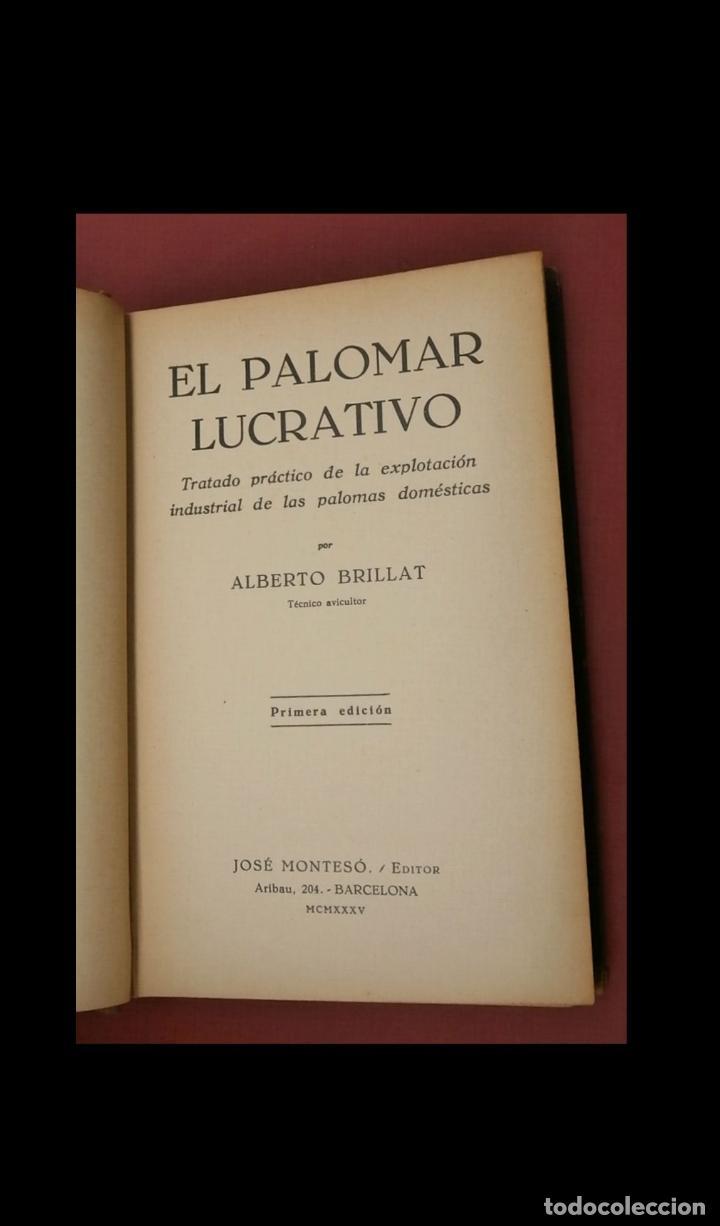 Libros antiguos: El palomar lucrativo. Tratado práctico de la explotación industrial de las palomas... A. Brillat - Foto 4 - 194884413