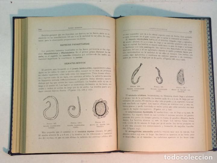 Libros antiguos: Pedro Serrano García: Indicioscopia. Impresiones - huellas - manchas pelos y fibras... - Foto 6 - 195343692