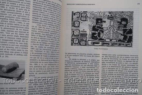 Libros antiguos: LIBRO ALIMENTACION Y GASTRONOMIA : CINCO SIGLOS DE INTERCAMBIOS ENTRE EUROPA Y AMERICA . 1998 - Foto 8 - 196510015