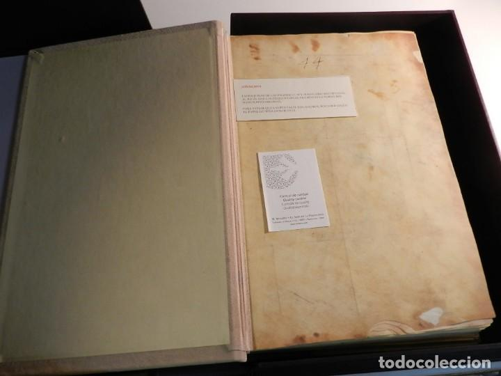 Libros antiguos: BEATO DE LIEBANA FACSÍMIL CODICE DE GIRONA MOLEIRO NUEVO ESTRENAR EN CAJA TRANSPORTE - Foto 6 - 196928737