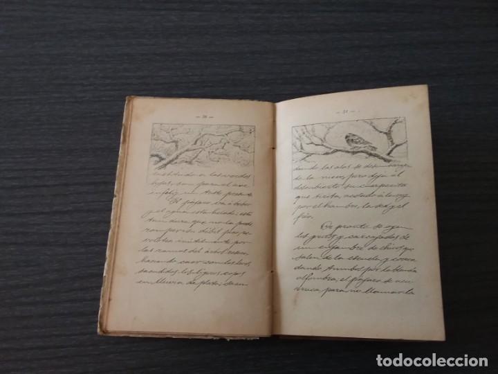 Libros antiguos: PANORAMA, LA NATURALEZA, POR JULIÁN BASTINOS - Foto 4 - 198184317