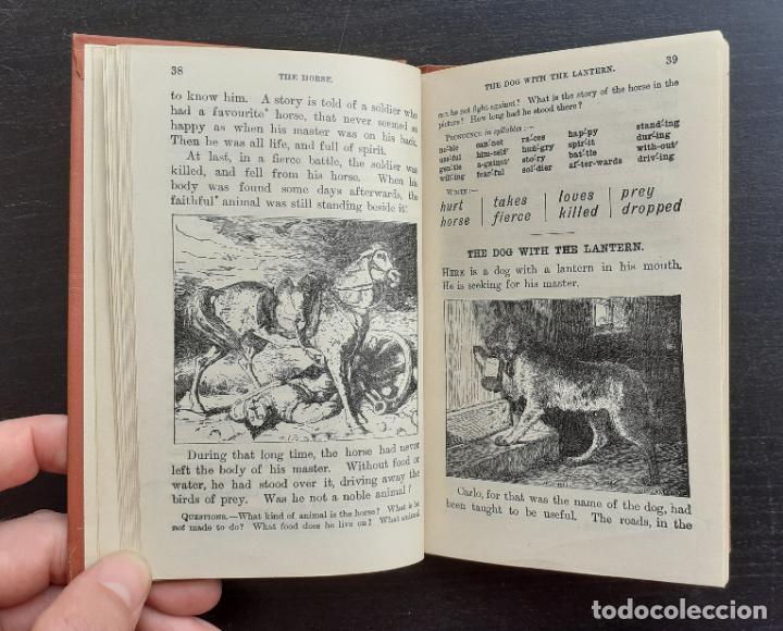 AÑO 1910 - LIBRO INFANTIL ILUSTRADO - THE ROYAL READERS - LECTURA EN INGLÉS PARA NIÑOS - GRABADOS (Libros Antiguos, Raros y Curiosos - Literatura Infantil y Juvenil - Otros)
