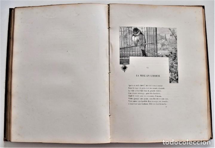 Libros antiguos: PRECIOSO LIBRO EN FRANCÉS L´ART D´ÊTRE GRAND-PÈRE - VICTOR HUGO - PARIS AÑO 1884 - Foto 11 - 204078538
