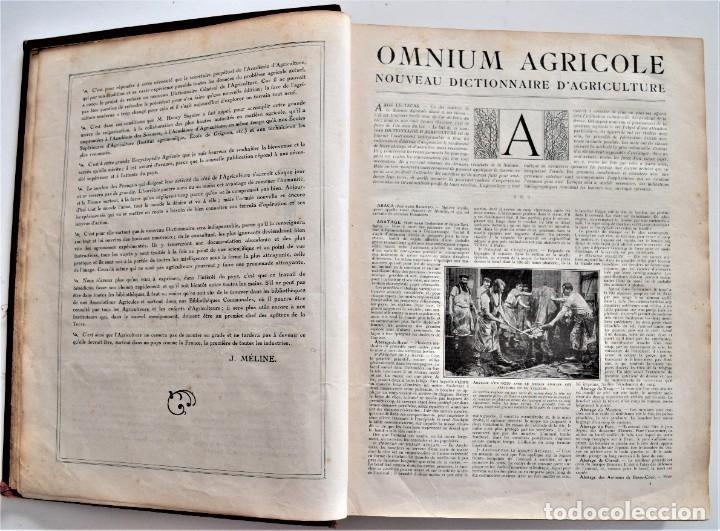 Libros antiguos: OMNIUM AGRICOLE - DICTIONNAIRE PRATIQUE DE L´AGRICULTURE MODERNE - HENRY SAGNIER - PARIS - Foto 5 - 204079636