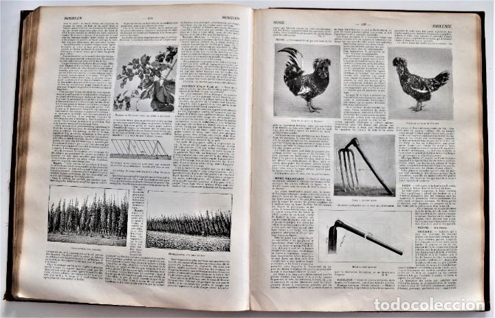 Libros antiguos: OMNIUM AGRICOLE - DICTIONNAIRE PRATIQUE DE L´AGRICULTURE MODERNE - HENRY SAGNIER - PARIS - Foto 9 - 204079636