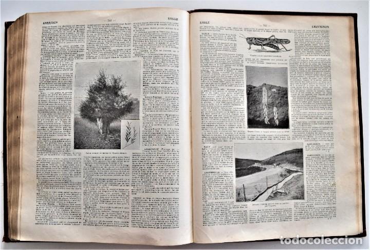 Libros antiguos: OMNIUM AGRICOLE - DICTIONNAIRE PRATIQUE DE L´AGRICULTURE MODERNE - HENRY SAGNIER - PARIS - Foto 10 - 204079636