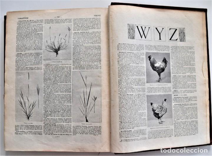 Libros antiguos: OMNIUM AGRICOLE - DICTIONNAIRE PRATIQUE DE L´AGRICULTURE MODERNE - HENRY SAGNIER - PARIS - Foto 11 - 204079636