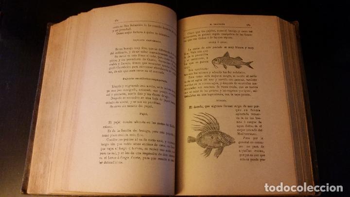 Libros antiguos: 1903 - ángel muro - El Practicón. Tratado completo de cocina al alcance de todos - Foto 4 - 205572932
