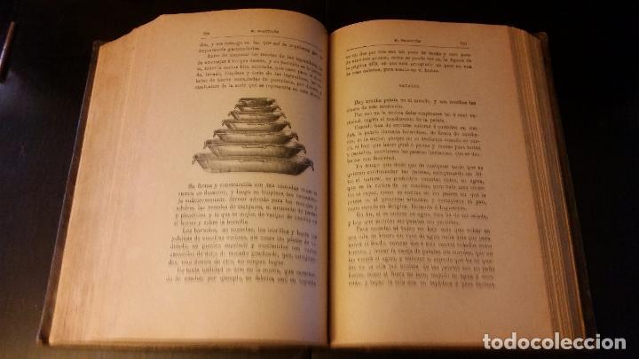 Libros antiguos: 1903 - ángel muro - El Practicón. Tratado completo de cocina al alcance de todos - Foto 5 - 205572932