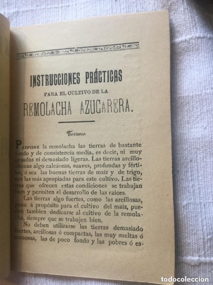 Libros antiguos: La azucarera de tudela Navarra - Instrucciones practicas para el cultivo de la Remolacha -15x11 19p. - Foto 2 - 209208380