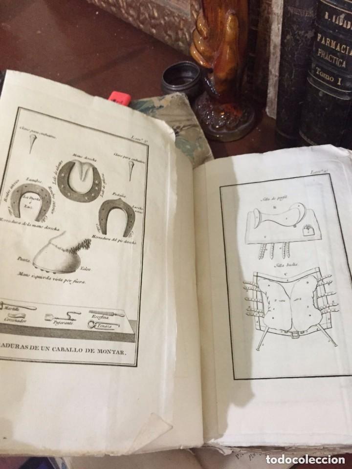 Libros antiguos: Caballeria. Volumen con 73 laminas grabadas para la Instrucción de los regimientos de Caballería - Foto 2 - 209218405