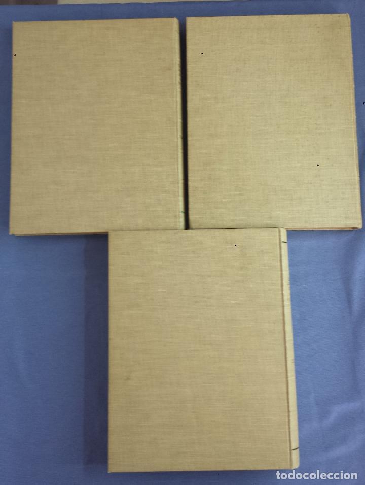 Libros antiguos: Libro holandés, Dantes Goddelijke Komedie, Edición limitada Nº 893/1025 - Foto 8 - 209234038
