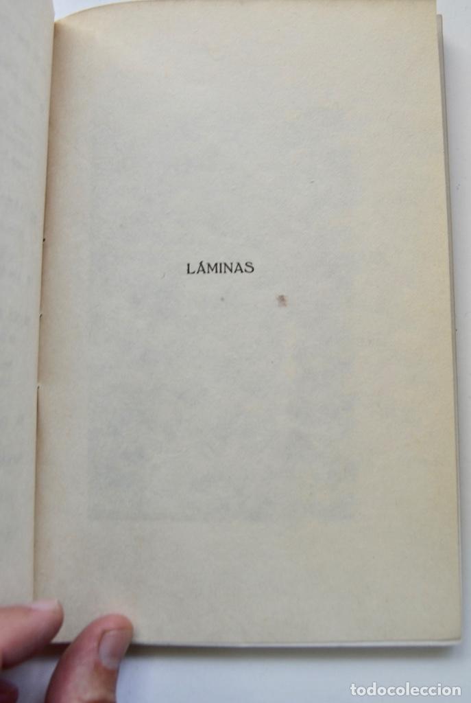 Libros antiguos: Museo Provincial de Bellas Artes de Valladolid. Catálogo de la Sección de Escultura. 1916 - Foto 8 - 210755324