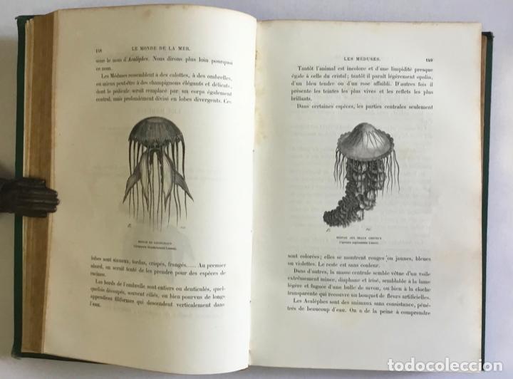 Libros antiguos: LE MONDE DE LA MER. - FRÉDOL, Alfred. 1865. GRABADOS - Foto 4 - 211652369