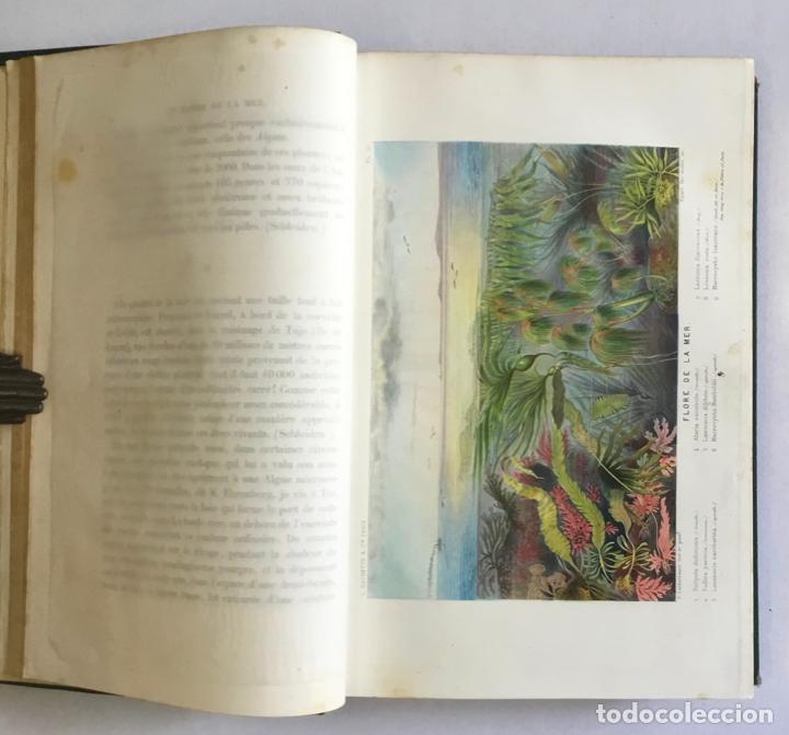 Libros antiguos: LE MONDE DE LA MER. - FRÉDOL, Alfred. 1865. GRABADOS - Foto 5 - 211652369