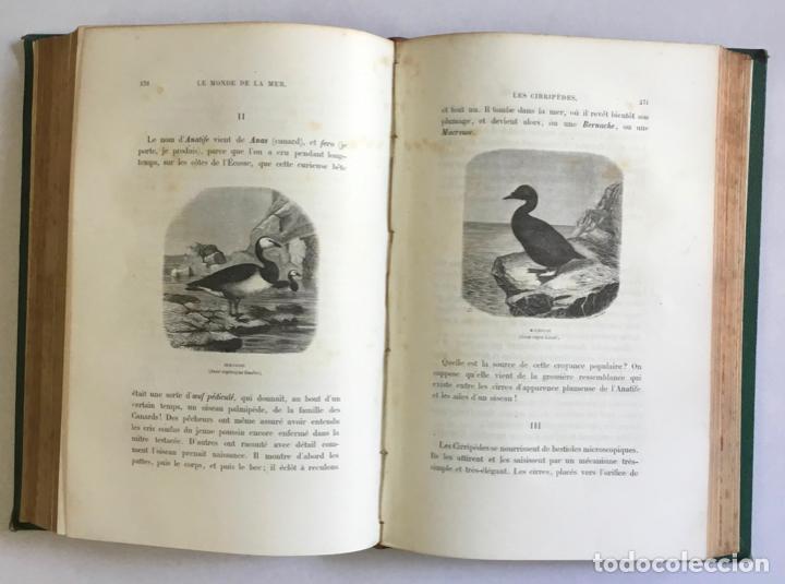 Libros antiguos: LE MONDE DE LA MER. - FRÉDOL, Alfred. 1865. GRABADOS - Foto 6 - 211652369