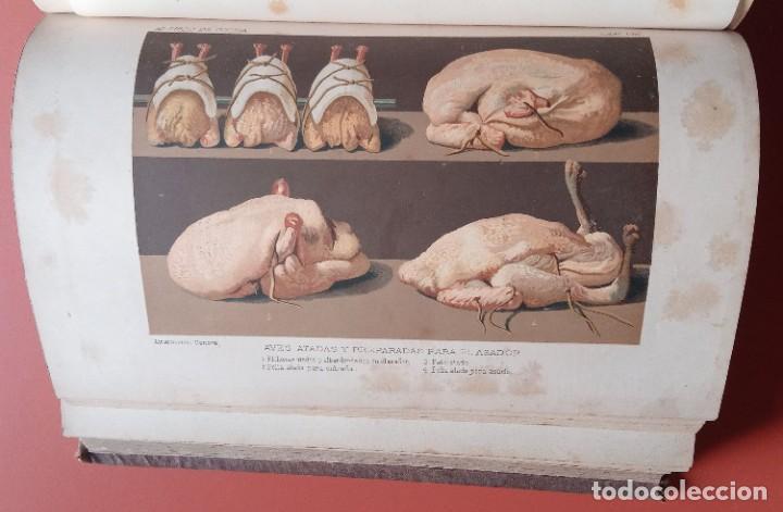 Libros antiguos: EL LIBRO DE COCINA - Comprende LA COCINA CASERA y LA GRAN COCINA - JULES GOUFFE - 1885 ca. - Foto 8 - 213353333