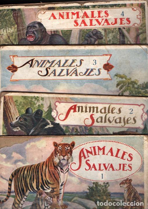EL REINO ANIMAL PARA NIÑOS SOPENA : ANIMALES SALVAJES - 4 VOLÚMENES (Libros Antiguos, Raros y Curiosos - Literatura Infantil y Juvenil - Otros)