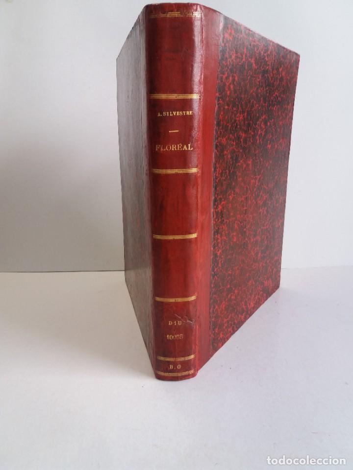 Libros antiguos: FLOREAL PRECIOSO Y EXTRAORDINARIO LIBRO UNICO EN TODOCOLECCION 1891 CASI 130 AÑOS - Foto 12 - 216600275