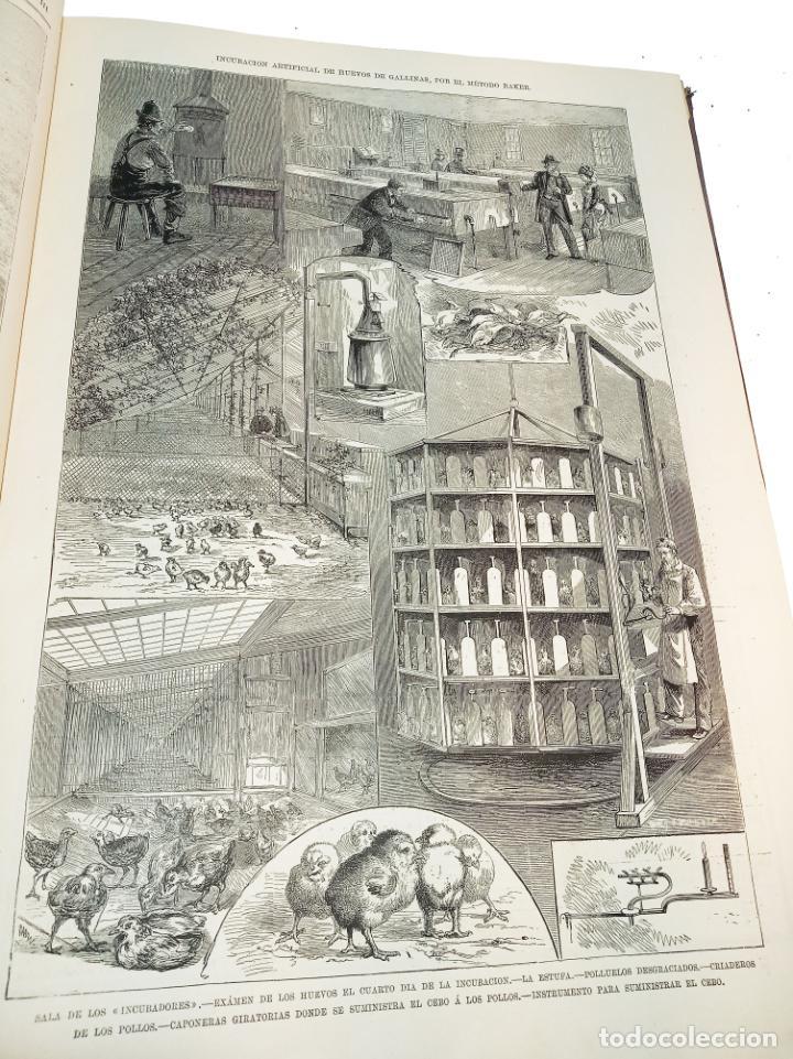 Libros antiguos: La ilustración Española y Americana. Segundo semestre. 1878. Profusamente ilustrado. Folio. - Foto 8 - 221096045