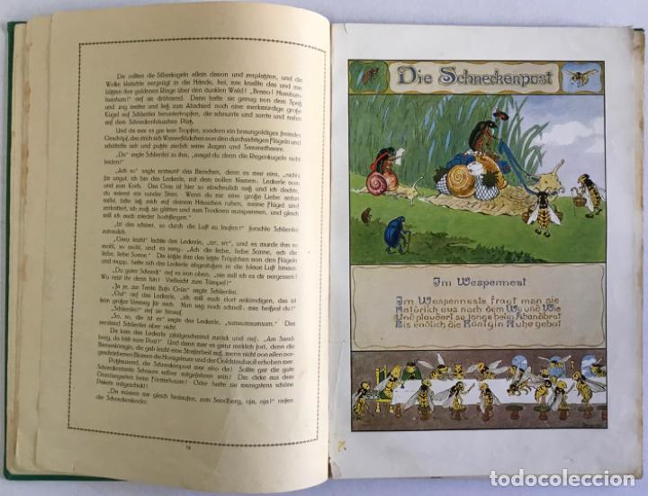 Libros antiguos: SCHLIERILEI. Ein Tiermärchen. - RINKEFEIL, Rudolf. - Foto 4 - 123237594
