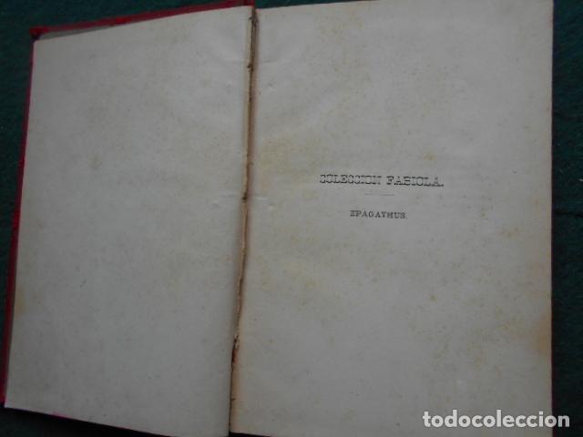 Libros antiguos: LOS MARTIRES DE LYÓN EPAGATHUS 1876 - Foto 5 - 222016151
