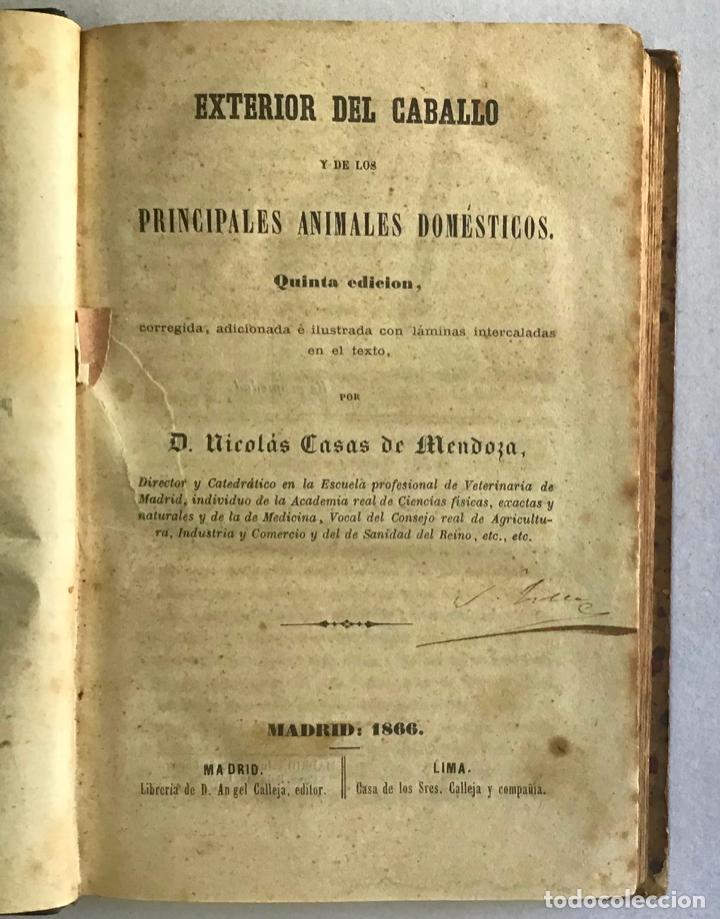 EXTERIOR DEL CABALLO Y DE LOS ANIMALES DOMÉSTICOS. - CASAS DE MENDOZA, NICOLÁS. (Libros Antiguos, Raros y Curiosos - Ciencias, Manuales y Oficios - Otros)